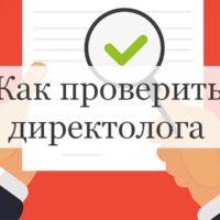 Как проверить директолога в процессе работы