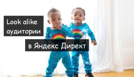 Look alike аудитории в Яндекс Директ